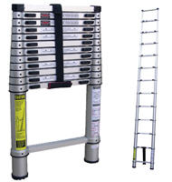 Where to find LADDER, TELESCOPIC 12 in Vancouver / Surrey